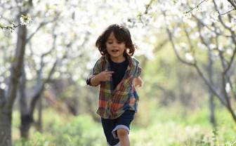 Kind rent door bloesembomen